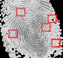 Agencja detektywistyczna – sposób na firmę